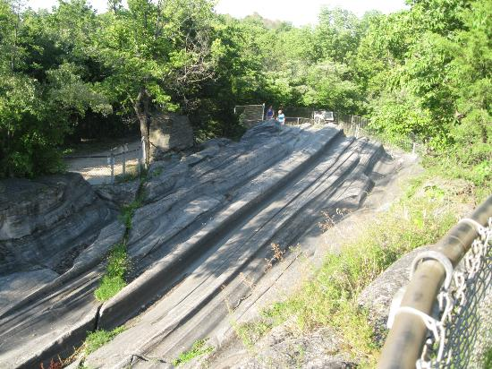 Kelleys Island, OH: Glacial Grooves State Monument 7/21