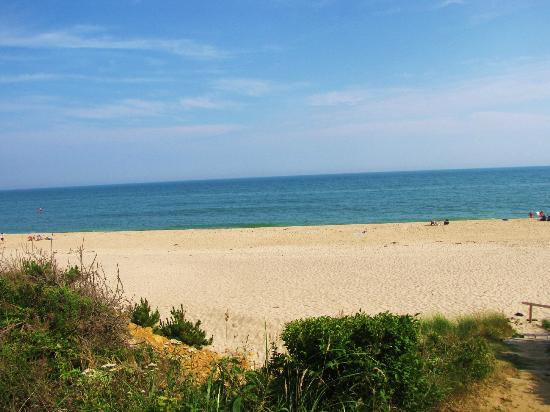 """Burcliffe """"By The Sea"""": Incredible beaches with beautiful clean sand - no seaweed or ick like the West Coast beaches!"""
