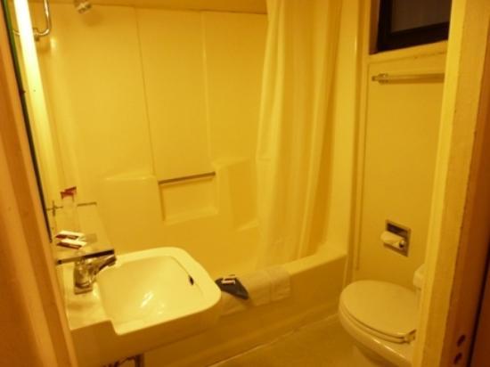 Highlander Motel: baño con cabina de ducha