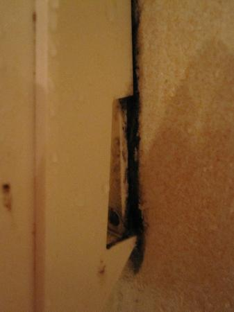 Barcelo Aruba: Mold in the shower