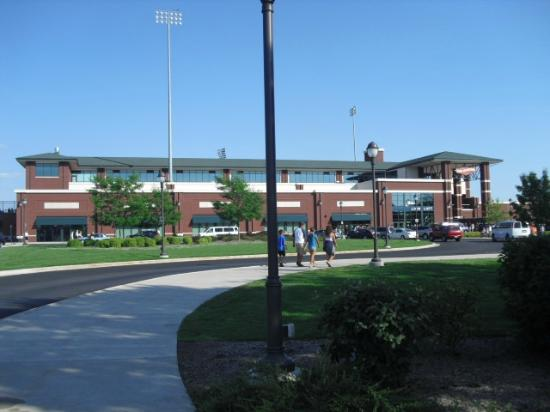 Dow Diamond: Great Lakes Loons