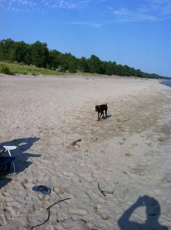 Long Point: very wide beaches