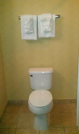 Holiday Inn Express & Suites Enid: toilet