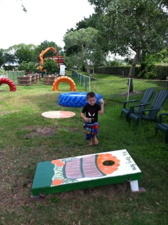 Al's Family Farms: playing orange hole