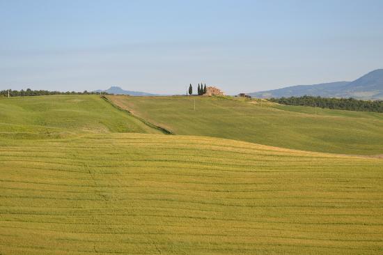 Agriturismo Bonello : Green