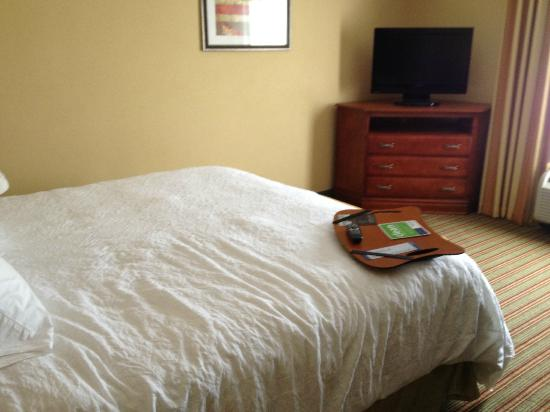 Hampton Inn Elkins: TV opposite the bed