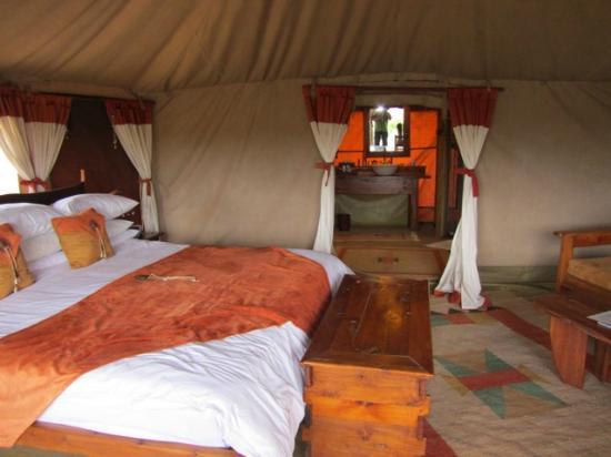 An Elephant Visits The Camp Picture Of Elephant Bedroom Camp Samburu National Reserve