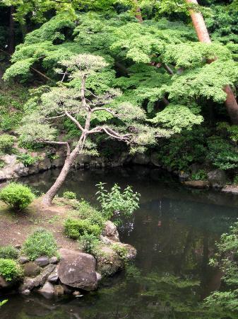 Tonogayato Garden: Serenity