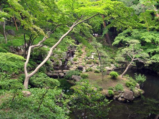 Tonogayato Garden: Lovely pond