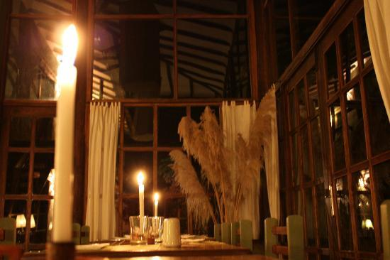 The Green House Peru: the ambiance amazing