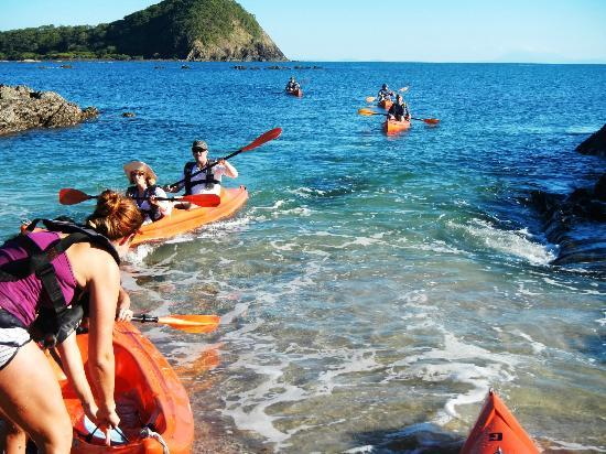 Palm Cove Watersports : Half-day tour exploring Haycock Island