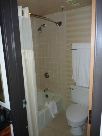 DoubleTree Suites by Hilton Hotel Seattle Airport - Southcenter: Bathroom