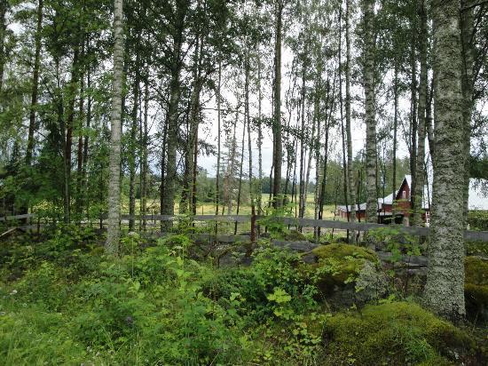 Paivolan Ratsutila: views of Päivölän Ratsutila