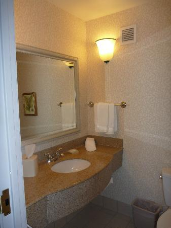 Hilton Garden Inn Spokane Airport: Bathroom
