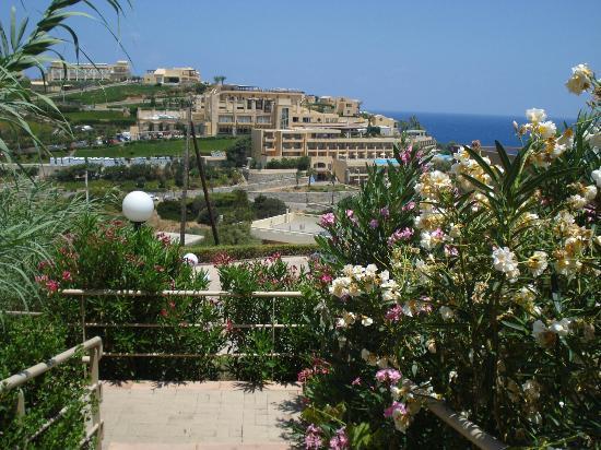 Blue Bay Resort Hotel: Petit chemin pour descendre à la plage Mononafits