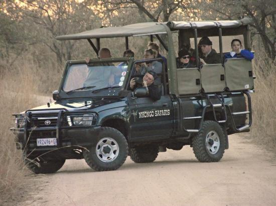 Nhongo Safaris - Day Tours: Guests in one of our Open Safari Vehicles