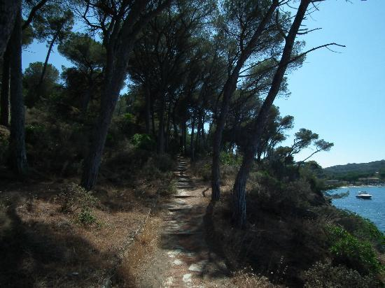 Villa Rodriguez Hotel: Weg zum Leuchturm an der Buchtspitze
