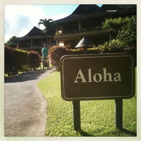 Napili Kai Beach Resort: giardino