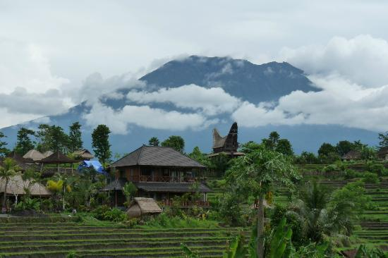 Sawah Indah Villa: View of hotel, mountain in backround