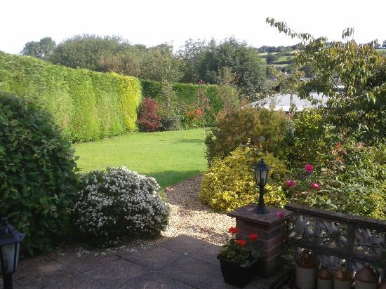 Dolronwy Bed & Breakfast: View of rear garden from the conservatory