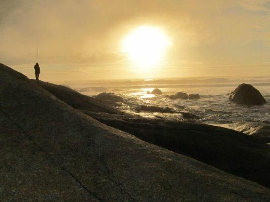 Abalone House & Spa : Sunset