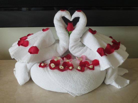 The Taj Mahal Palace: Towel art, Housekeeping making sure I was comfortable!