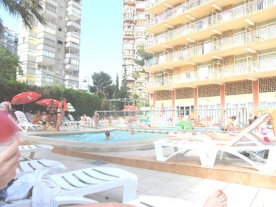 Gala Placidia Hotel : Pool