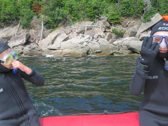 Plongee Forillon: La mise à l'eau tout près des phoques