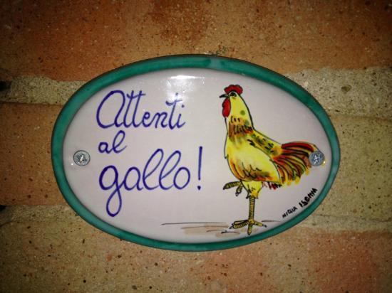 Beste Spielothek in San Gallo finden