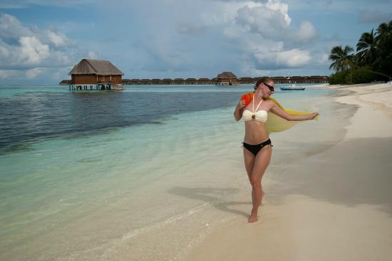 Meeru Island Resort & Spa: центральная часть острова