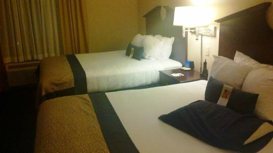 Wingate by Wyndham Erie: Standard room