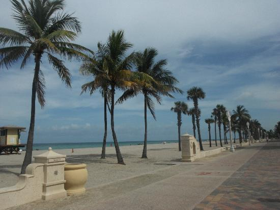 Hollywood Beach Suites, Hostel and Hotel: beach