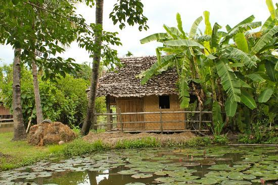 The Dhara Dhevi Chiang Mai: Rice fields throughout the property