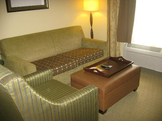 Hampton Inn & Suites Port Richey : Living area with sofa bed.