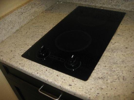 Hampton Inn & Suites Port Richey: Ceramic two burner electric stove
