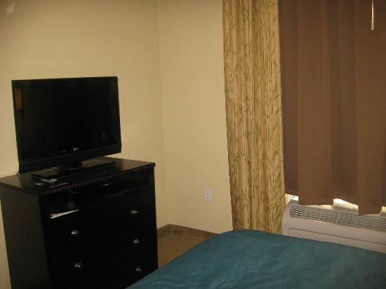 Hampton Inn & Suites Port Richey: Bedroom TV with a DVD player.