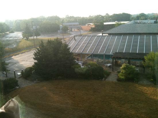 DoubleTree by Hilton Libertyville - Mundelein: vista della piscina dalla camera