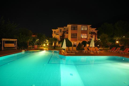Oran Apart Hotel : The pool area