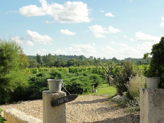 Chateau Nardou: Vue du gîte sur les vignes