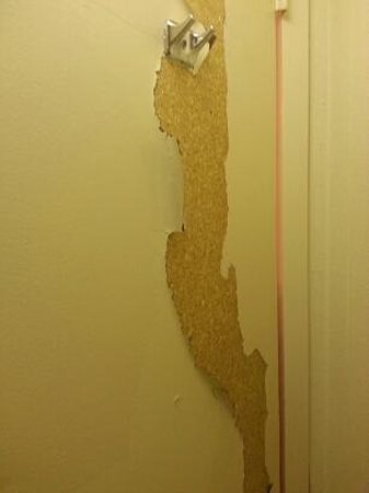 Quality Inn Tysons Corner: This is the ripped-up bathroom door.