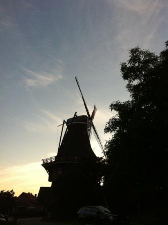 Die Mühle Jork: die Mühle bei Sonnenuntergang im Juli