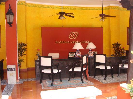 Royal Level at Occidental Cozumel : reception