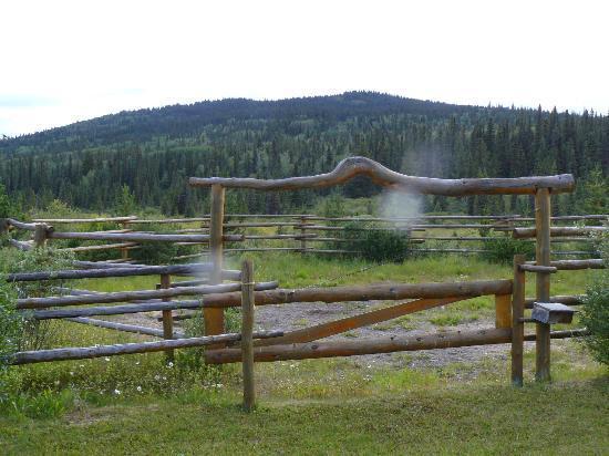 Bear Paw Ranch Resort: il corral