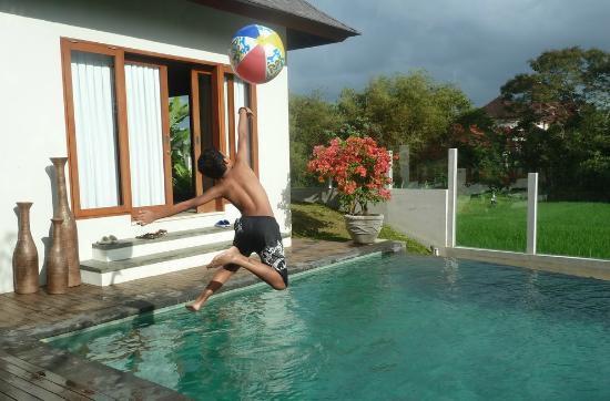 Jabunami Villa Canggu Bali : Paddy field view from the pool
