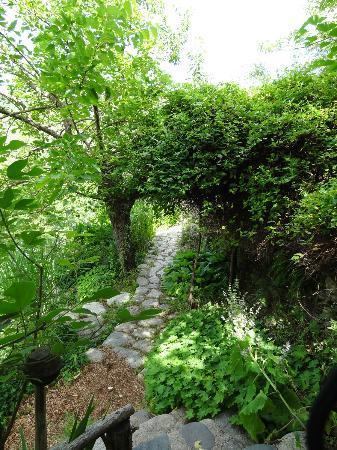 Le Jardin des Sambucs