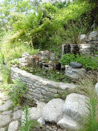 Le Jardin des Sambucs : Kleiner Teich