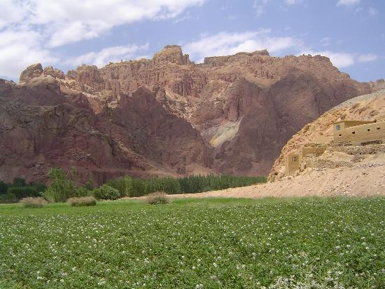 Cultural Landscape and Archaeological Remains of the Bamiyan Valley: The Red City outside Bamyan
