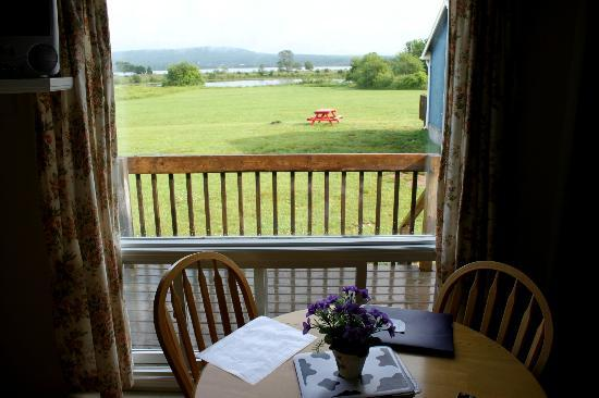 Crown Cove Cottages: View towards river from our cottage