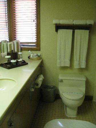 Inn at the Tides: Dated bathroom