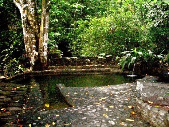 Osa Clandestina: fresh water pool